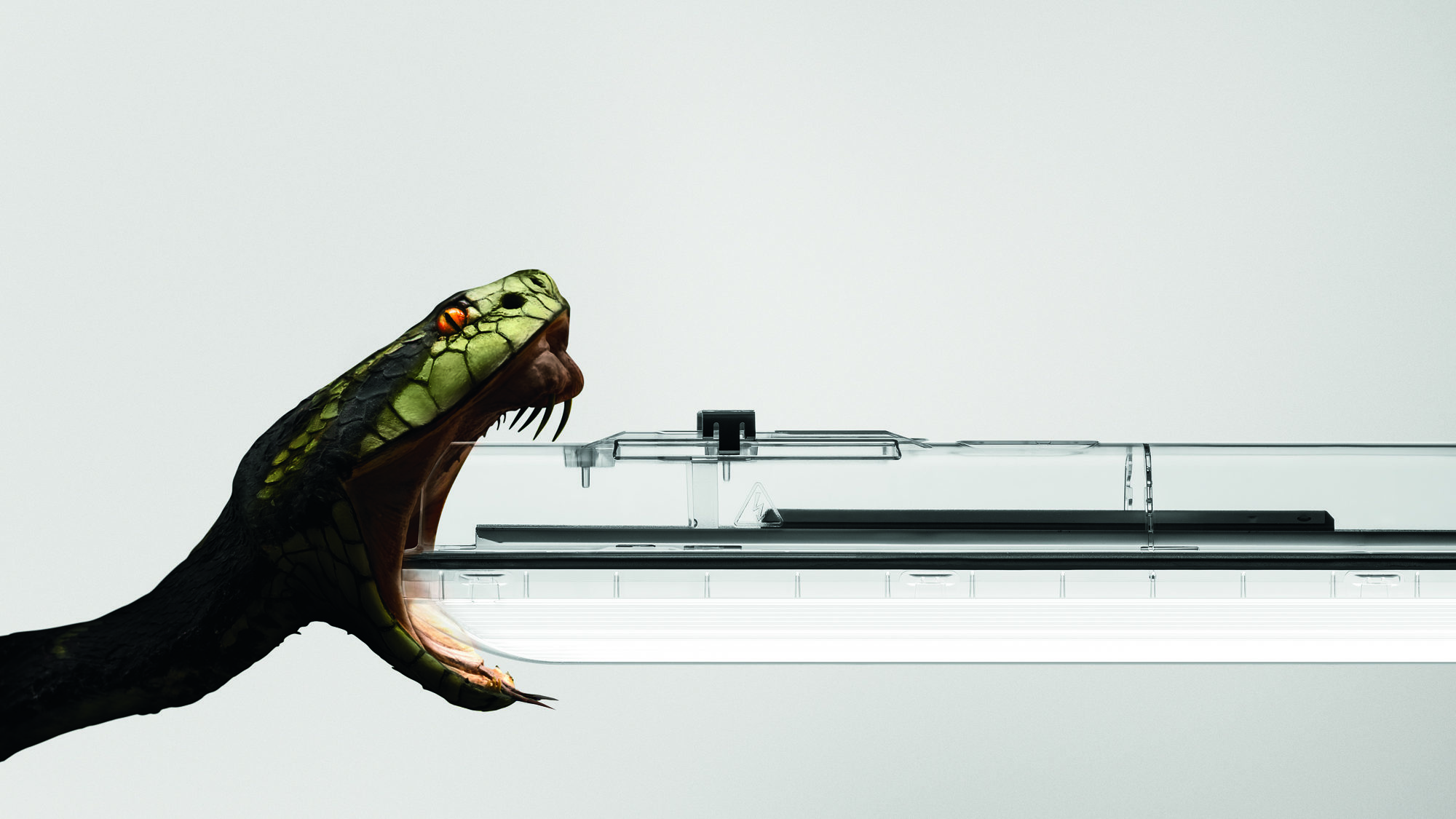 Feuchtraumlampe, Amphibia